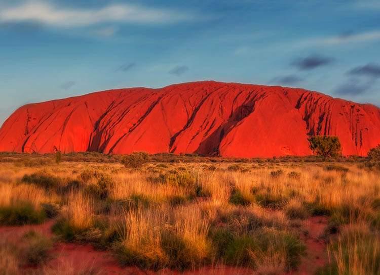 Ciekawostki australijskie: jesteś kupa