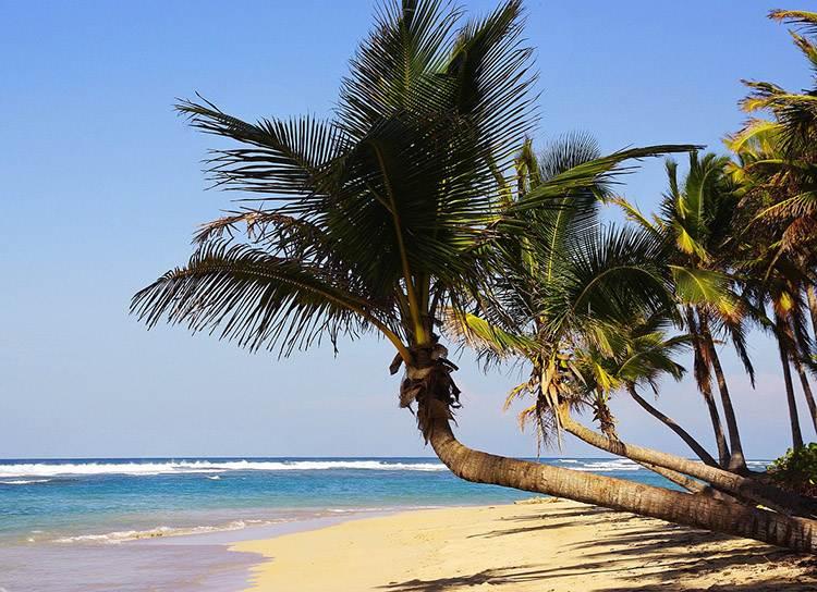 Dominikańskie alkohole i cygara