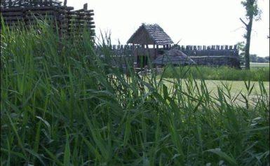 Biskupin – starożytna osada w Polsce