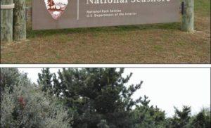 Robert Moses State Park, NY, USA