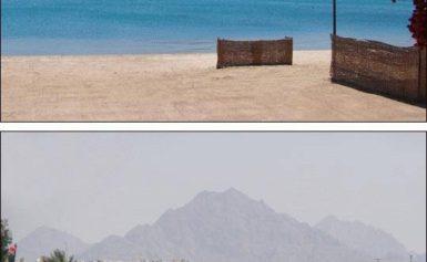 Turystyka – główne źródło dochodu Egiptu