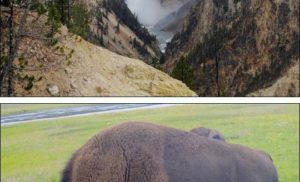 Yellowstone National Park, USA
