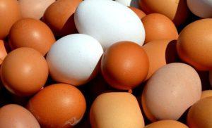 10 ciekawostek o jajkach