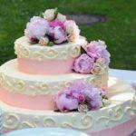 tort ciekawostki o tortach torty