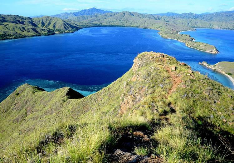 Rok 2020. Turyści nie odwiedzą wyspy Komodo