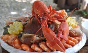Owoce morza – 10 ciekawostek