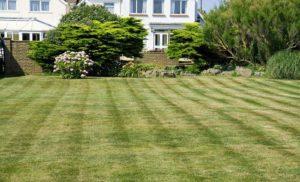Koszenie trawnika późną jesienią – porady