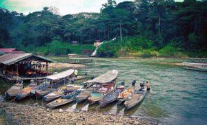 Taman Negara – w malezyjskiej dżungli