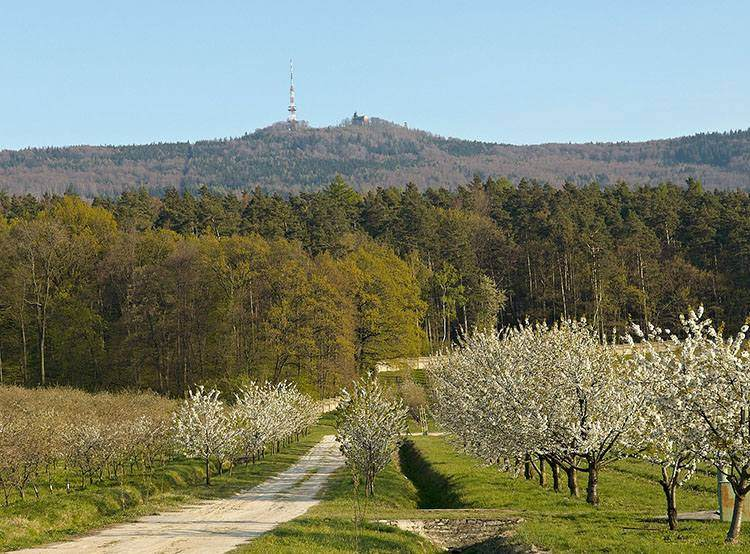 Ślęża – polska góra mnichów i tajemnic