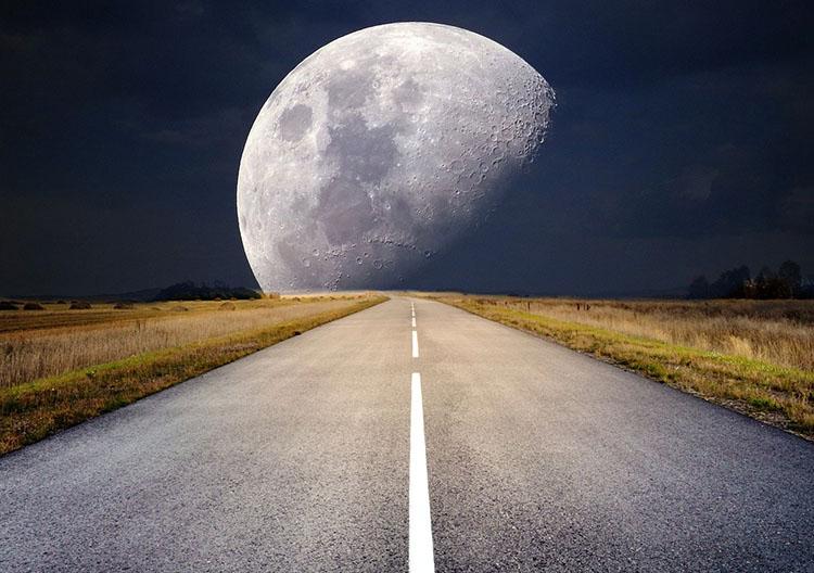 Komórki rozrodcze trafią na księżyc