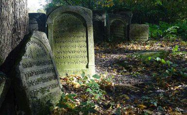 Szczebrzeszyn. Największy cmentarz żydowski w Polsce
